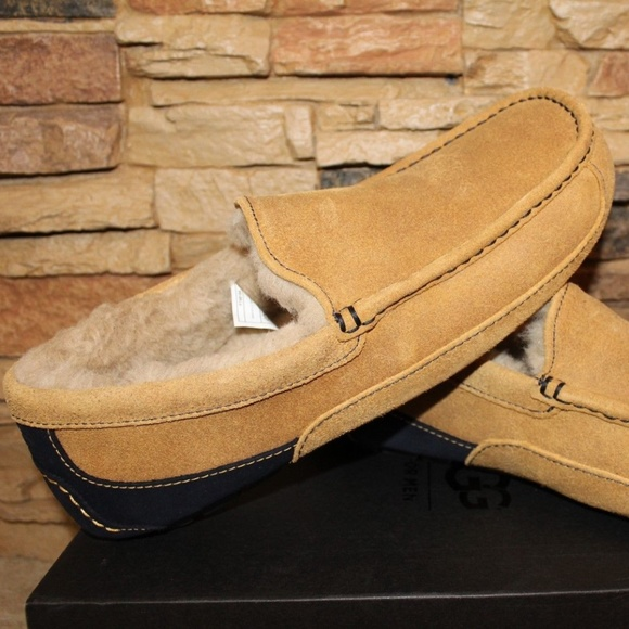 94a7adaef5b NEW UGG ASCOT Suede Shearling Slippers
